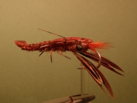NM\'s Eyes-n-Tubes Crayfish