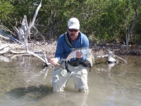 Belize bonefish 2012